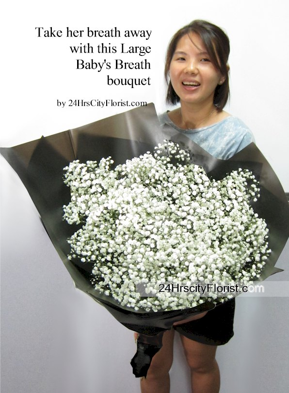 Large Baby's Breath  Bouquet