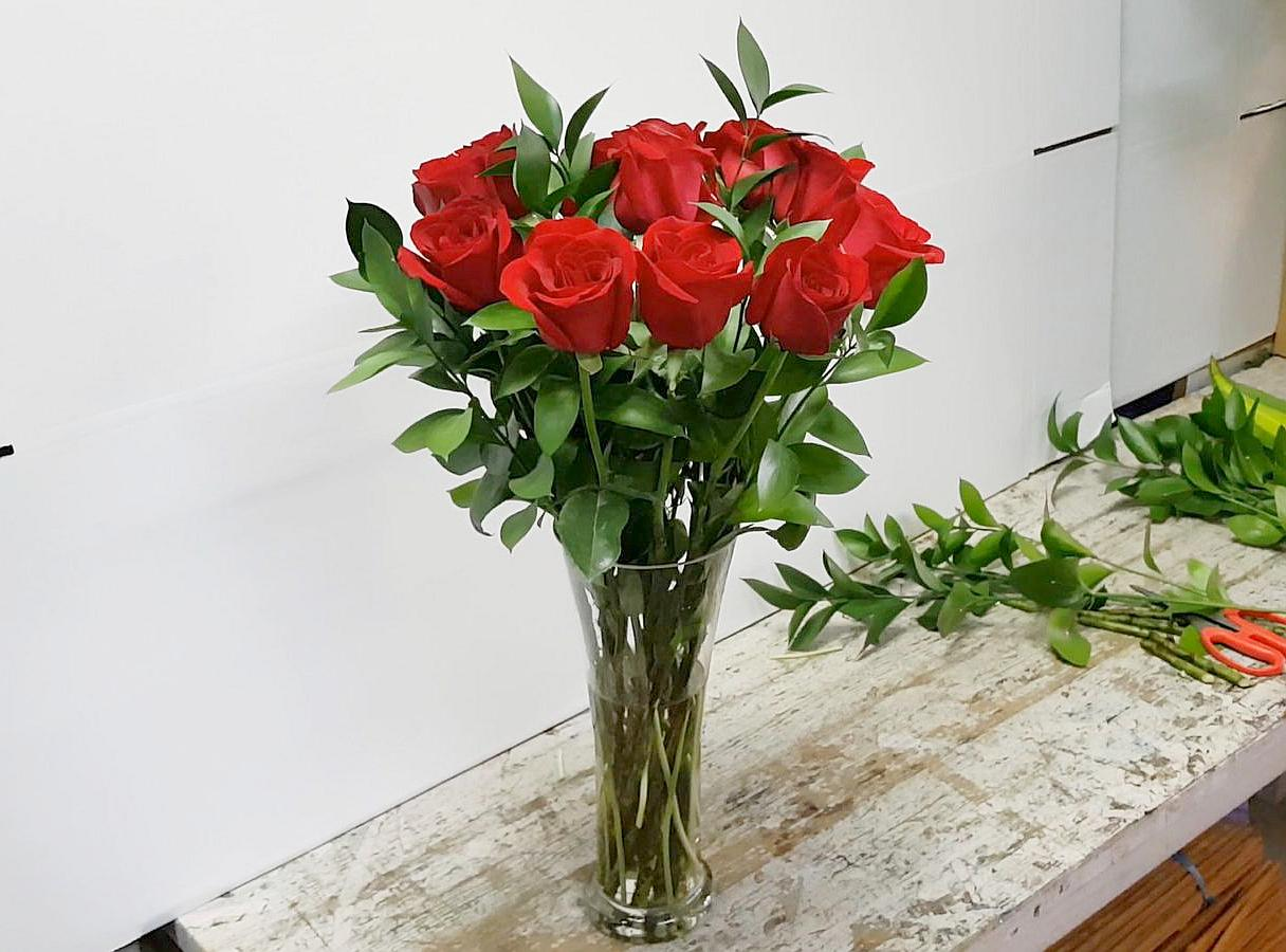 red rose for valentine's day