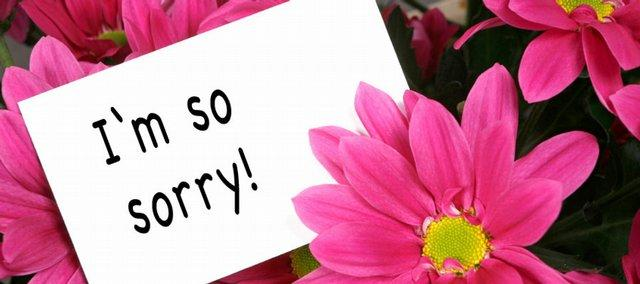 saying sorry just gets a little easier with flowers