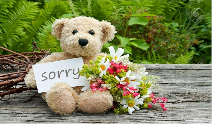 send teddy to say sorry