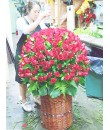 Bountiful Love Bountiful Roses
