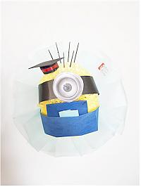 Graduating Minion Bo..