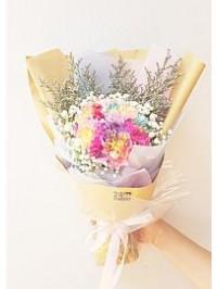 Rainbow Carnations B..