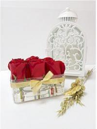 Rose In Clear Box..