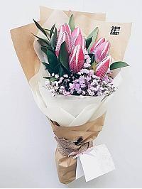 Alluring Tulips..