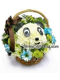 Panda In A Basket..
