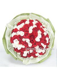 Red And White Rose H..