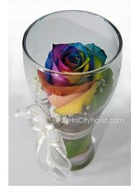 Rainbow Rose In A Gl..