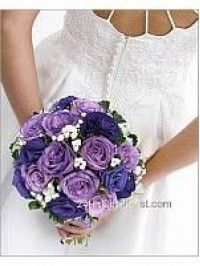 Royal Purple Rose Br..