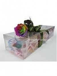 Rainbow Rose in A Bo..