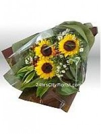 Sunflower Delivery S..
