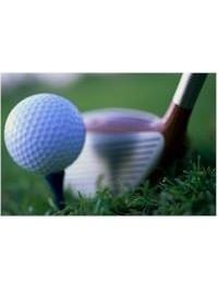 Lush Golf consisting..