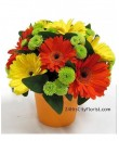 Florist Delivery - Smile