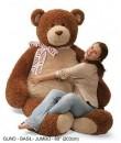 C5 Gund Bear Jumbo