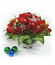 A Rose Christmas