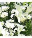 Sincerity - Funeral Wreath Singapore