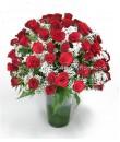 Vase of Rose For Valentine