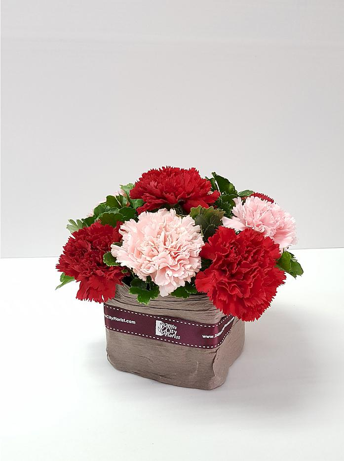 Mini Carnations Arrangement