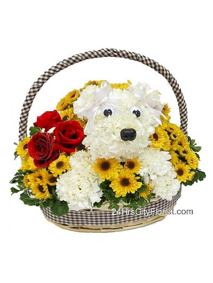 puppy arrangement in a basket