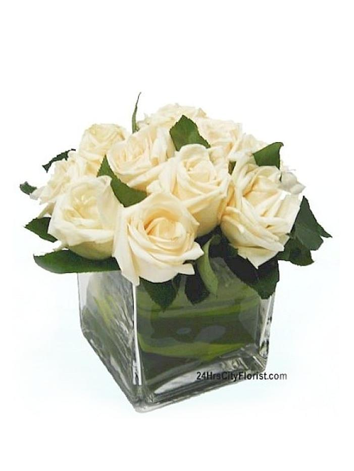 white rose in cube vase