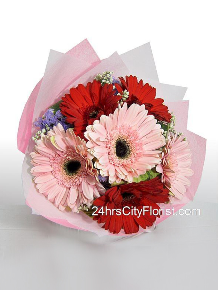 Gerbera Hand Bouquet Pink Red