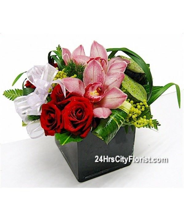 D3 Cymbidium Rose Cube