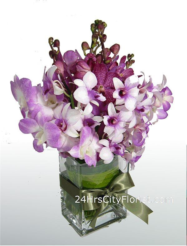 Royal Purple Orchids
