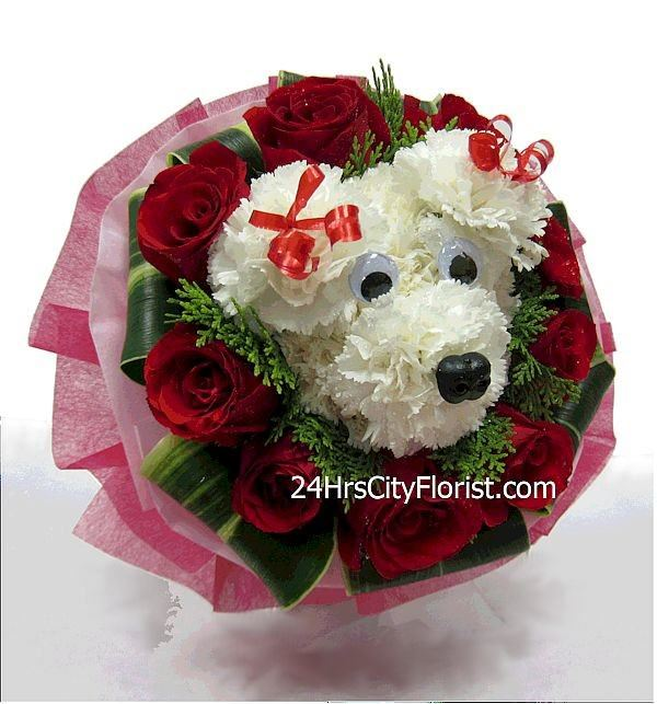puppy bouquet with carnations and roses by 24Hrs City Florist ...