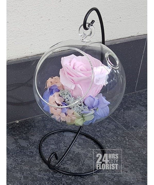 Preserved Flowers - Hanging Rose